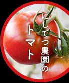 にしおてつ農園のトマト